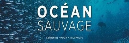 Océan Sauvage de Catherine Vadon