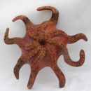 Guy-Le-Gal-octopus
