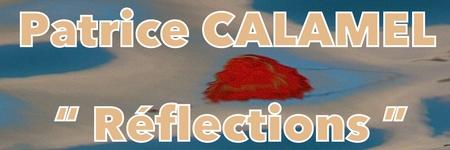 Patrice Calamel - Réflections