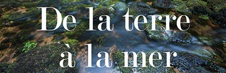 Laetitia Beauverger expo 2020 Quimperle